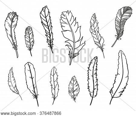 Feathers. Hand Drawn Feathers On Isolation Background. Design For Spiritual Relaxation For Adults. B