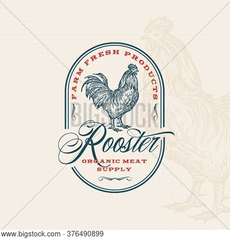 Farm Fresh Poultry Abstract Vector Sign, Symbol Or Logo Template. Hand Drawn Rooster Sillhouette Wit