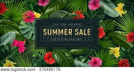 Realistic Hibiscus Horizontal Ads Poster With Rectangular Frame Editable Text Discount And Tropical