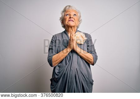 Senior beautiful grey-haired woman wearing casual dress standing over white background begging and praying with hands together with hope expression on face very emotional and worried. Begging.