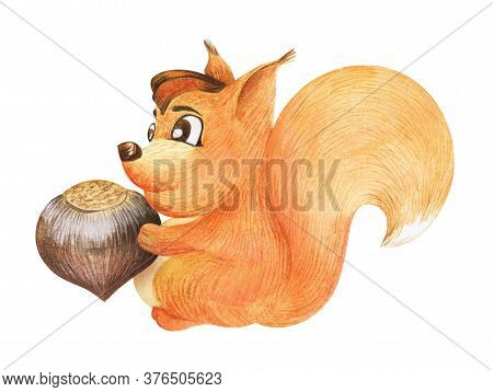 Watercolor Image Of Friendly Cartoon Squirrel With Smiling Hazel Eyes And Big Fluffy Tail Isolated O