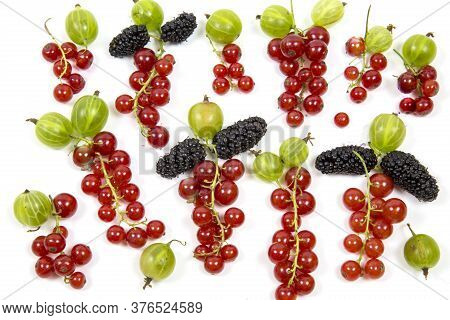 Mulberry Gooseberry Red Currant Tassels Isolated On White Background, Place For Concept Text. Food E