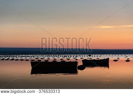 Mediterranean Mussel Farm In The Mar Piccolo Of Taranto, Puglia, Italy