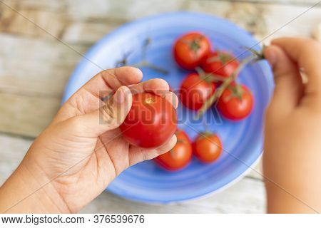 Hands Holding Cherries Tomatoes