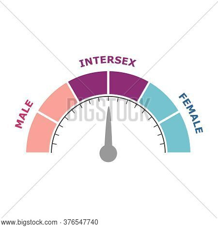 Transgender Transsexual Concept. Unconventional Sexual Orientation Illustration. Level Scale With Ar