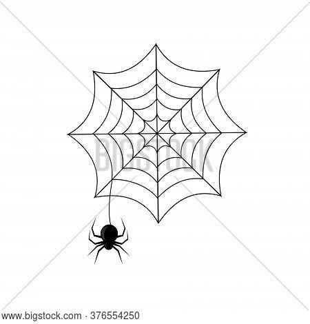 Spider Hanging On A Web, Black Outline White Background, Color Vector Illustration, Design, Decorati
