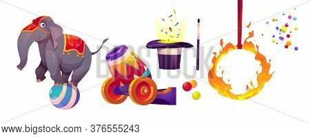 Circus Icons With Elephant Standing On Ball, Fire Ring, Cannon, Hat And Magic Wand. Vector Cartoon S