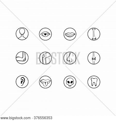 Human Body Parts Icons. Anatomy, Human Senses. Thin Line Contour Symbols. Isolated Vector Outline Il