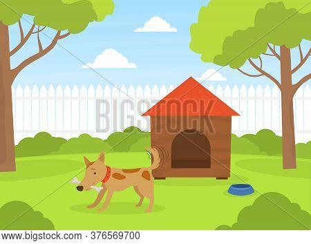 Cute Dog Gnawing Bone On Green Lawn Near Doghouse In Backyard, Beautiful Summer Landscape Flat Vecto