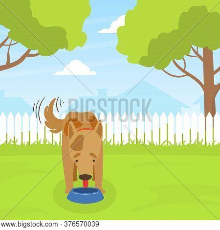 Cute Dog Eating Dog Food On Lawn In Backyard On Beautiful Summer Landscape Flat Vector Illustration