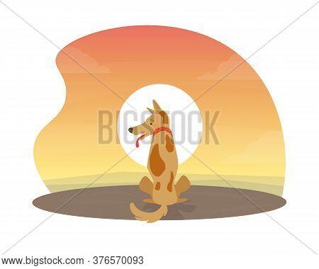 Cute Dog Sitting At Beautiful Sunset Flat Vector Illustration