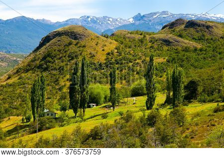 Green Pasture In The Patagonia Andes - Chile