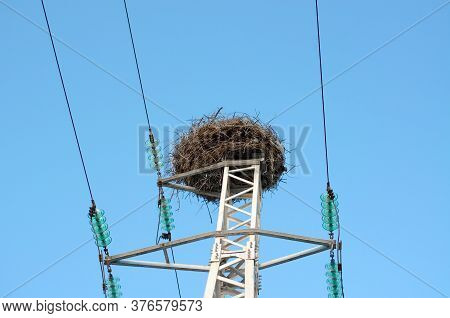 Stork Nest On A Power Line Pole. A Large Stork's Nest View From Below