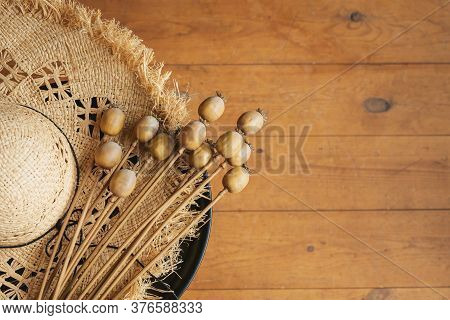 Dried Poppy Seed Pods On A Brim Straw Hat. Dried Flowers For Interior Decoration And Floristics.