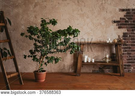 Modern Loft Style Interior. Textured Wall With Bricks, Benjamin's Ficus, Wooden Stirrup And Console.