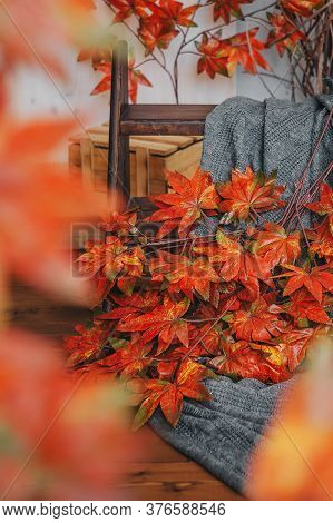 Red Maple Branches And A Gray Knitted Plaid On A Wooden Background. October Mood. Autumn Leaves.