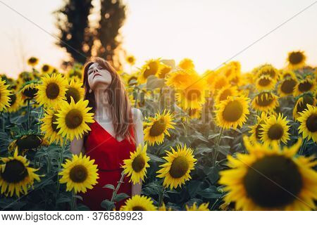Woman With Red Dress In Sunflower Field