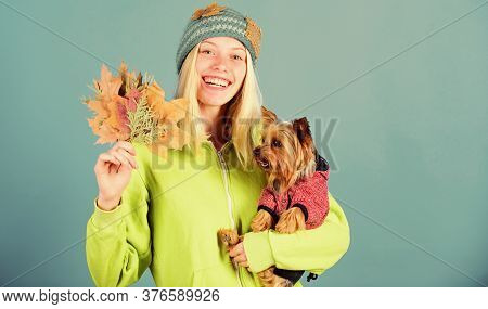 Woman Carry Yorkshire Terrier. Take Care Pet Autumn. Veterinary Medicine Concept. Health Care For Do