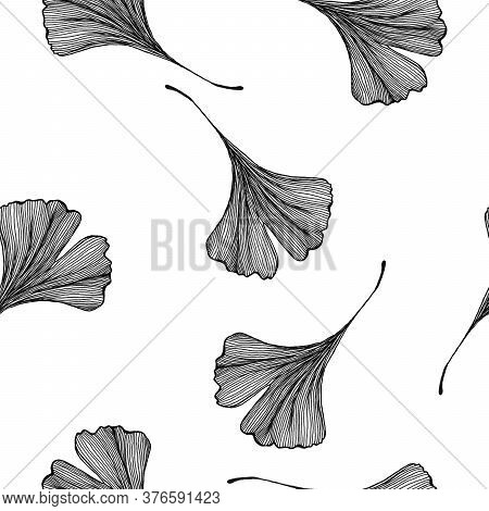 Monochrome Ginkgo Biloba Seamless Background, Hand Drawn Line Art Illustration With Ginkgo Leaves Fo
