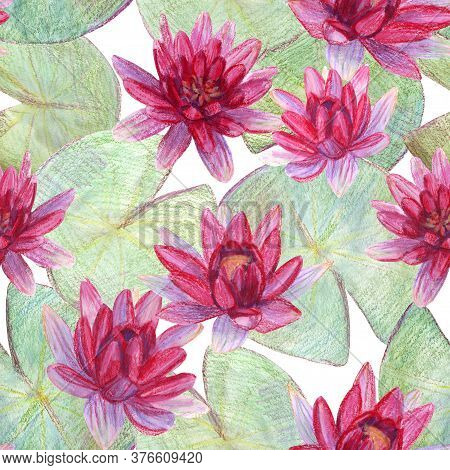 Seamless Pattern With Water Lily . Pencil Drawing, Watercolor And Pastel. The Print Is Used For Wall