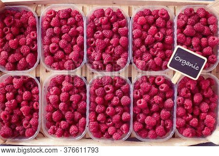 Freshly picked red raspberries on display at the farmers market