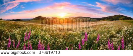 Panoramic Sunset Over A Vast Blossoming Meadow Landscape, With Flowers In The Foreground, Hills On T