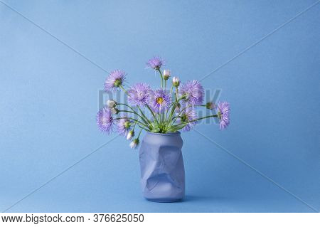 A Bouquet Of Purple Daisy Flowers In A Vase From Under A Can Of Cola On A Blue Background