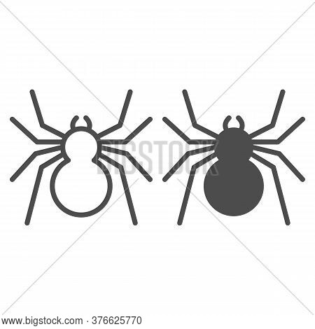 Spider Line And Solid Icon, Insects Concept, Predatory Arachnid Sign On White Background, Classic Sp