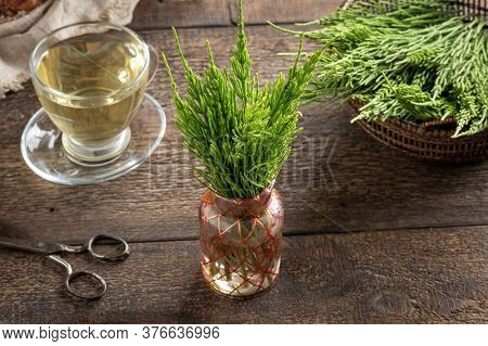 Horsetail Twigs And Tea On A Wooden Table