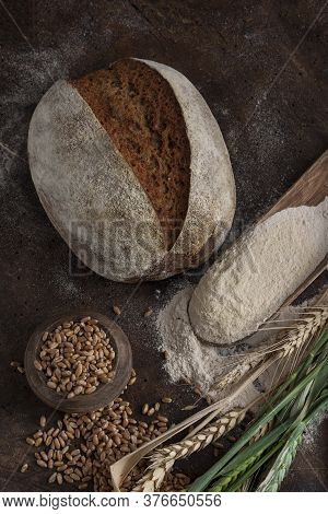The Way Of Bread - Wheat, Grain, Flour.  Sourdough Bread = Flour + Water+ Salt