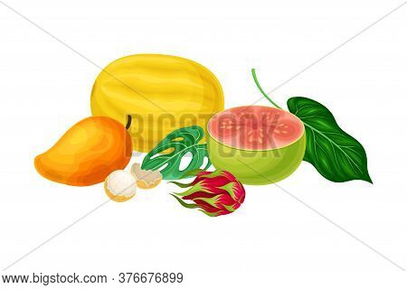 Juicy Fruits With Melon And Mango With Palm Leaves Hawaiian Vector Composition