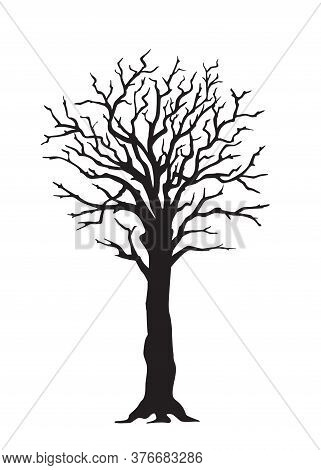 Black Silhouette Illustration Tree With  Large Trunk  Without Leaves. Icon Tree Isolated On The Whit