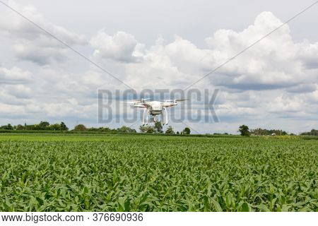 Drone Flying Over A Meadow. Drone On Green Corn Field. Drone Copter Flying With High Resolution Digi