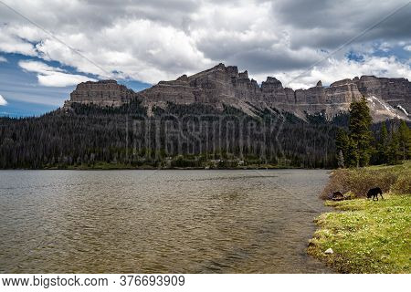 Brooks Lake, At The Base Of The Pinnacle Buttes Northeast Of Jackson Hole Near Dubois Wyoming. Black