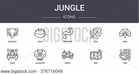 Jungle Concept Line Icons Set. Contains Icons Usable For Web, Logo, Ui Ux Such As Frog, Leaf, Tiger,