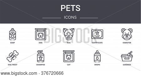 Pets Concept Line Icons Set. Contains Icons Usable For Web, Logo, Ui Ux Such As Dog, Certificate, Do