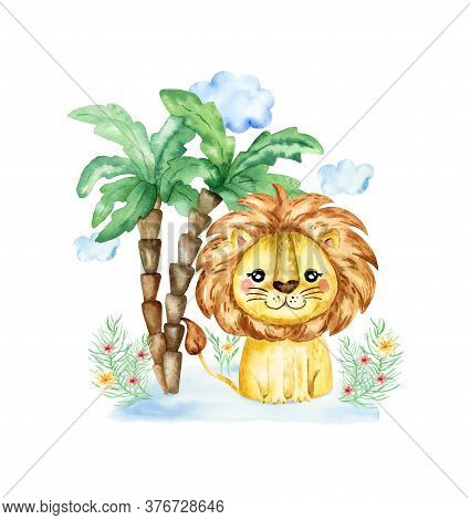 Watercolor Illustration With A Lion. Watercolor Cartoon Lion Savanna Animal Illustration. Jungle Sav