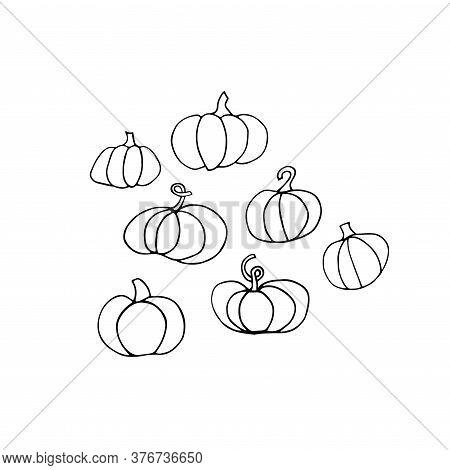 Doodle Pumpkin Set. Collection Of Different Pumpkins Isolated On White Background. Outline Hand-draw