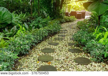 Circle Shape Of Pattern Walkway Stepping Sand Stone On White Gravel In A Backyard Garden Of Lush Gre