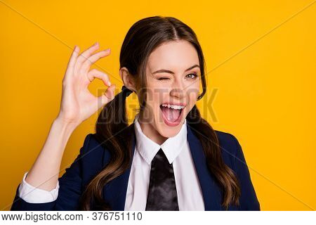 Portrait Of Positive Excited High School Teenager Enjoy Great Scholar Campus Lecture Show Ok Sign Wi