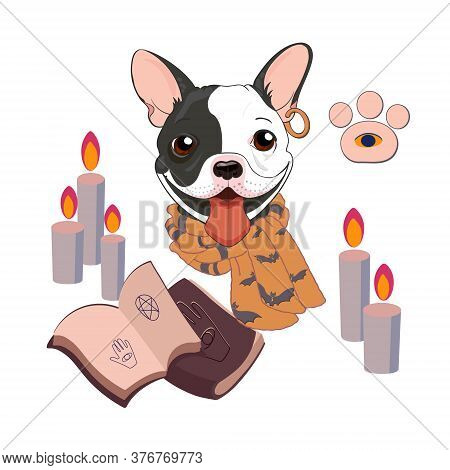 A Mystical Illustration Demonstrating Fortune-telling. Dog Predicts The Future. Attributes Of Occult