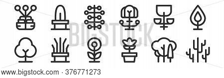 Set Of 12 Thin Outline Icons Such As Cactus, Cosmos, Dry Tree, Bloom, Seeds, Cactus For Web, Mobile