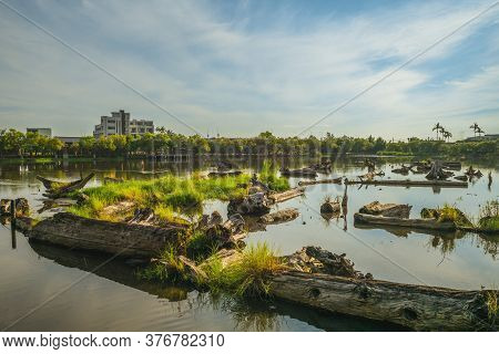 Timber Pond Of Luodong Forestry Culture Park In Yilan, Taiwan