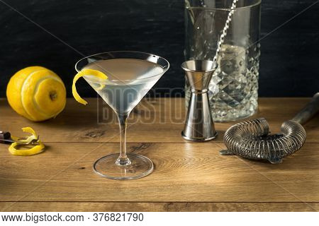 Boozy Refreshing Gin Martini