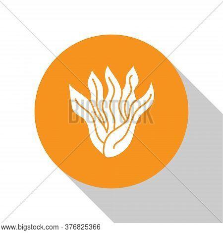 White Seaweed Icon Isolated On White Background. Underwater Seaweed Spirulina, Aquatic Marine Algae
