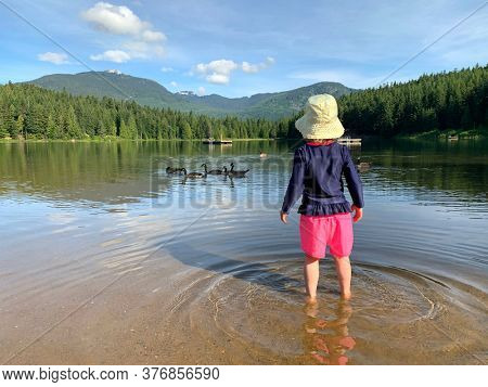 Three year old girl standing in a lake looking at the Canada geese swimming by. Young child playing in the water in summer time. Lost Lake in Whistler, British Columbia, Canada.