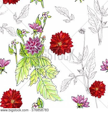 Seamless Pattern Of Flowers And Inflorescences Of Pink And Red Dahlias On A White Background