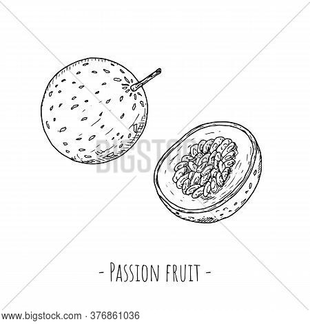 Passion Fruit. Vector Cartoon Illustrations. Isolated Objects On White.
