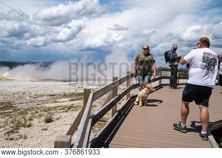 Yellowstone National Park - July 1, 2020: Tourists Illegaly Bring Their Pet Dog On The Boardwalks Th