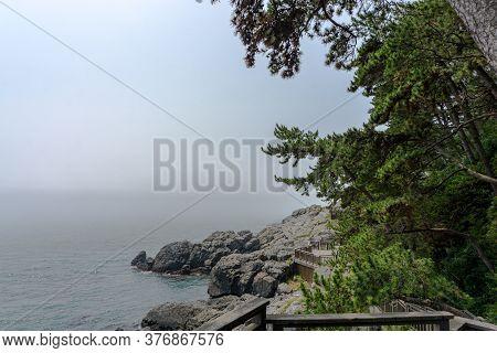 Mist Covers The Rock Shore Of Haeundae Dongbaekseom Island In Busan, South Korea.